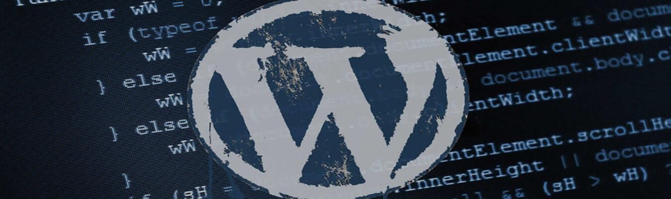 developpeur wordpress independant tunisie